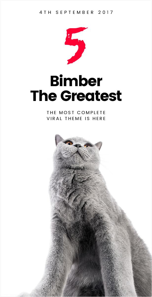 Bimber Viral Magazine WordPress Theme - version 5.0